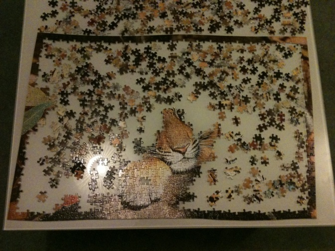 The Jigsaw of Life