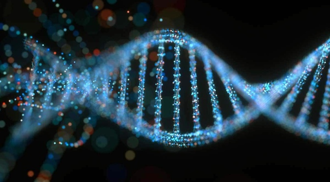 Embedding whole life discipleship into your church's DNA