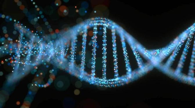 Embedding whole life discipleship into your church's DNA